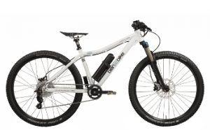 Katze_Jugend_ebike_ben-e-bike